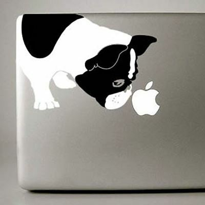 French Bulldog Large B&W Decal NEW (IB001BW) FREE SHIPPING - Mailed Next Day