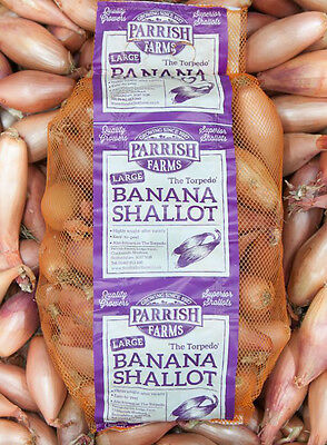 BANANA SHALLOTS (Large) 4kg - Direct from our Farm
