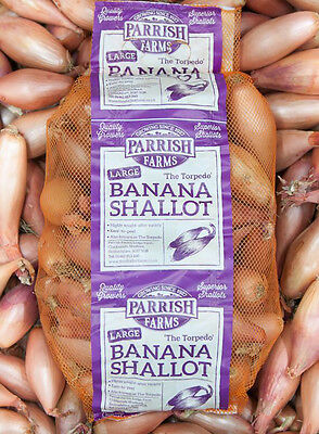 BANANA SHALLOTS (Large) 12kg - Direct from our Farm