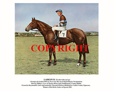 LARKSPUR & Neville Sellwood: 1962 Derby winners 10x8 print, ready for framing
