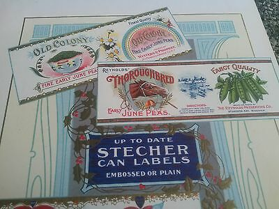 1900-1905 STECHER LITHOGRAPHIC CO ROCHESTER NEW YORK Salesman SAMPLE CAN LABELS