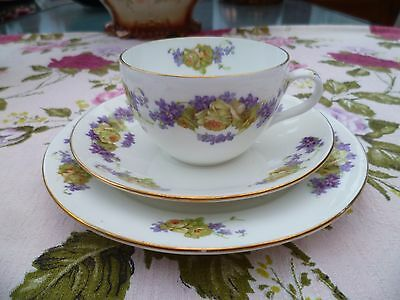 Vintage Shelley China Trio Tea Cup Saucer Late Foley Bute Shape Violet 8307