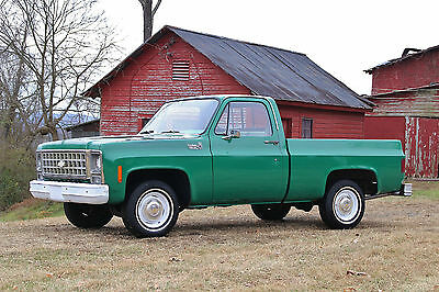 1980 Chevrolet C-10 Custom Deluxe **ONE OWNER**C10**PATINA**BARNFIND**66K MILES**SHORTBED**SHOP TRUCK**FARM TRUCK*