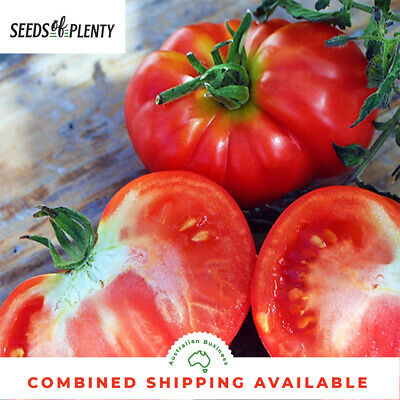 TOMATO - Oxheart (100 Seeds) HEIRLOOM Low Seed Variety