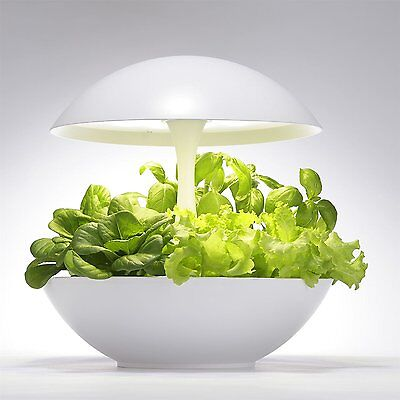 Akarina Hydroponic Indoor Plant and Flower Growing System with LED Grow Light -