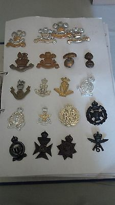 British Army Badge Collection Regimental Australian Large Nearly 200 Badges