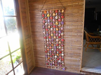Large Shell Hanging . 150 x 55 cm