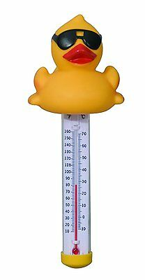 Derby Duck Swimming Pool Thermometer