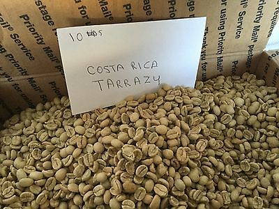 10 Pounds Of Tarrazu Green Coffee Beans Coffee Roasting Beans Coffee
