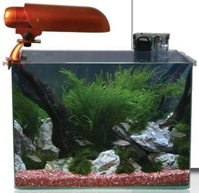 Aquatic Nature Cocoon Solar Set 6 (31,2 l - 40x26x30 cm)