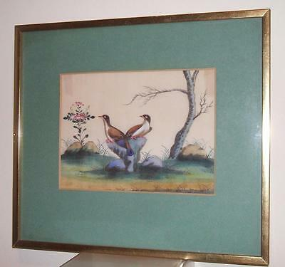 ANTIQUE CHINESE RICE PAPER PITH PAINTING BIRDS FRAMED - No.3