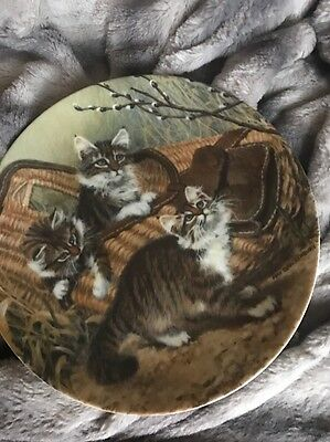 "1987 ""Gone Fishing Maine Coons"" By Amy Brackenburys - Cat Tales Collector Plate"