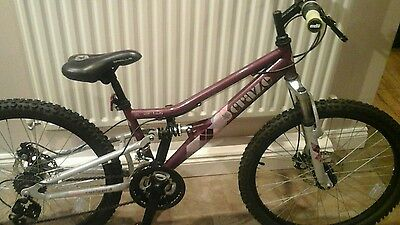 raleigh craze mountain bike