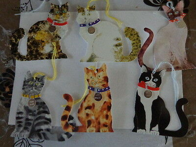 6x cat tags with collars