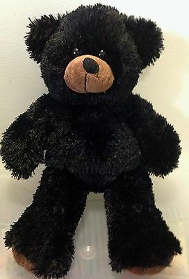 Recordable Personalised Gorgeous 15 Inch Bear - Choose Bear Rrp $39.95