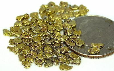 GOLD NUGGETS 4.09 grams Alaskan Placer Franklin Creek #10 - #12 Mesh Gold