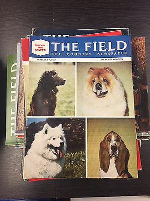 THE FIELD: The Country Magazine: 66 Issues from 1960-1967