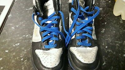 Boys Nike Teddy Skateboard High Top  Trainers / Boots Size 4.5
