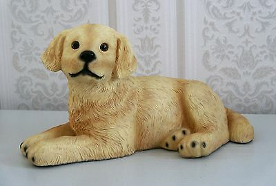 Golden Retriever Lying Down - Perfect Condition