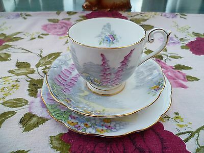 Pretty  Vintage Queen Anne English China Trio Tea Cup Saucer Plate Lovers Lane