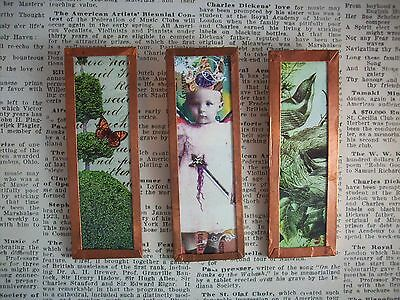 Set of 3 Microscope Slide Magnets Collage Images Topiary Bird Fairy OOAK