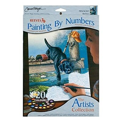 Artists' Collection Medium Paint by Numbers Ripples - SAME DAY DISPATCH