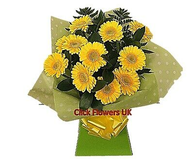 FRESH REAL FLOWERS  Delivered Gerbera Selection Bouquet Free Flower Delivery