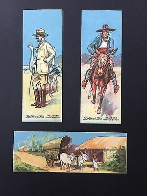 Cigarette Cards & Collectables **3 Typhoo Animals & People**