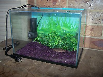 Small fish tank with pump: great for beginner! MELB.