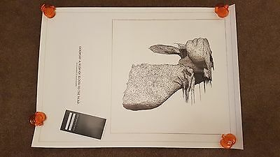 Coldplay A Rush Of Blood To The Head: Lithograph 269 of 500 by Solve Sundsbo NEW
