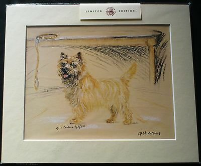 CAIRN RESCUE CHARITY Mounted Print Gill Evans ARTISTS PROOF Ltd Ed CAIRN TERRIER