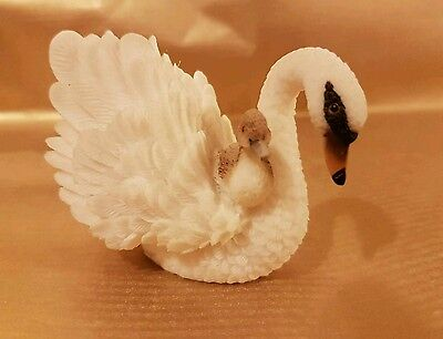 Swan and Baby.