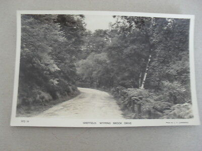 Postcard - Sheffield - Wyming Brook Drive - Trees - Real Photograph