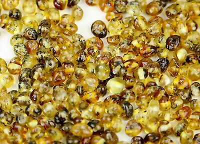 Genuine Natural Very Rare Green Polish Baltic Amber Small Beads With Holes - 30p