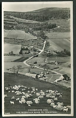 Aberdeenshire - Cockbridge Moutain Road - Rp Postcard - Posted 1957 - Jb White