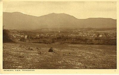 Trimsaran Nr Llanelly General View Lady In Field C1920 Rap Co Postcard