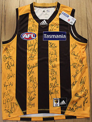 Hawthorn Hawks Team Squad Signed Autographed Football Jumper Guernsey