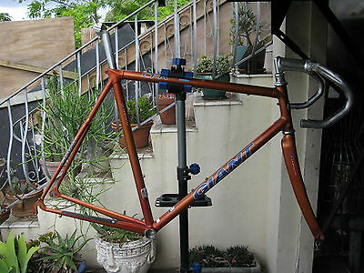 59 cm giant carbon fibre composite frame and fork with cinelli bars