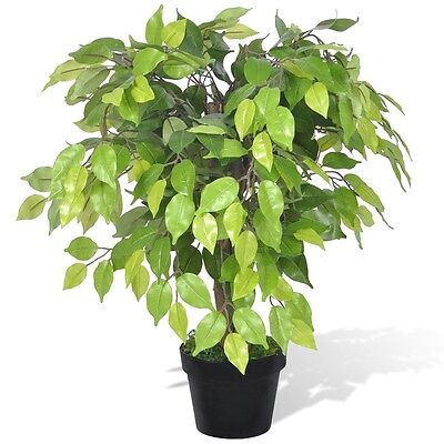 #sNEW Artificial Dwarf Ficus with Pot 60 cm Fake Plant Arrangement Home Decor