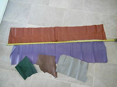Assorted Leather for Bear Pads