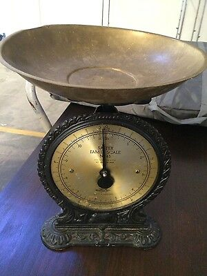 Salter Family Scales No.45