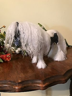 OOAK Hand Sculpted Clay Gypsy Vanner Dollhouse 1:12 Size Caco Doll Size
