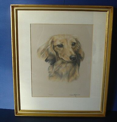 ORIGINAL FRAMED PASTEL STUDY OF DACHSHUND DOG - SIGNED  SHEENA McCALL 1985