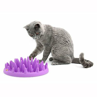 Northmate Catch Interactive Cat Dog Slow Feeding Non Slip Toy Treat Feeder Bowl