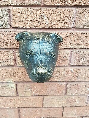 stone Staffordshire Bull terrier head