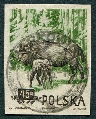 POLAND 1954 45g black-brown & deep yellow-green SG900 used NG IMPERF Bison #W7