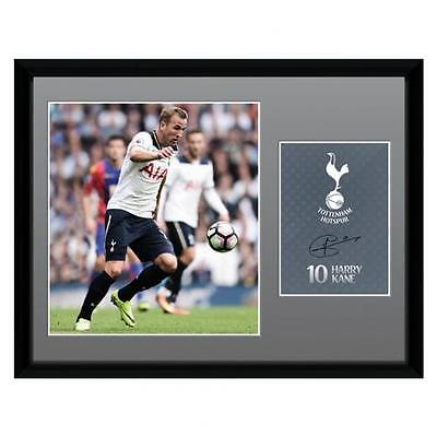 Official Tottenham Hotspur F.C. Picture Kane 16 x 12 Xmas Football Gift
