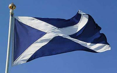 GIANT SCOTLAND FLAG 35 inches x 60 inches SIX NATIONS/BURNS NIGHT/PARTIES