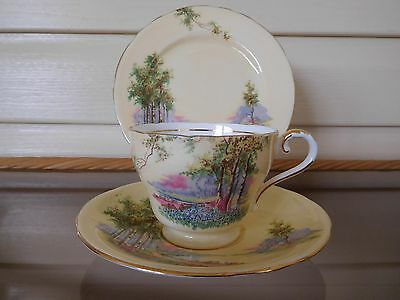 """Vintage Aynsley """"Bluebell Time"""" Trio C493 Made In England Mint Condition"""