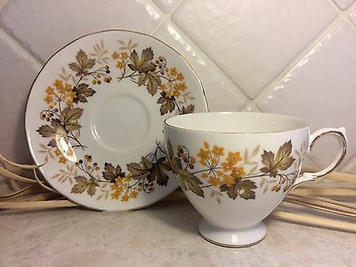 Vintage Royal Vale Bone China Teacup Duo - Autumnal Design